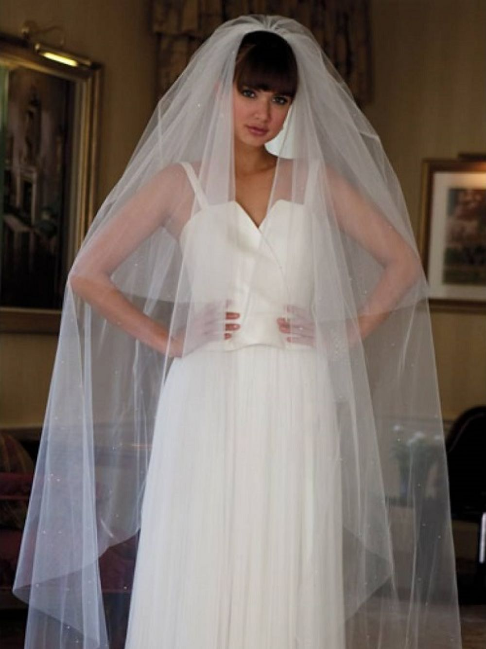 Joyce Jackson Cairo Scattered Diamante Wedding Veil with Cut Edge
